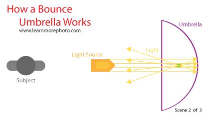 Bounce Umbrella Light Diagram 2 of 3