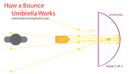 Bounce Umbrella Light Diagram 3 of 3
